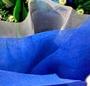 Alb albastru